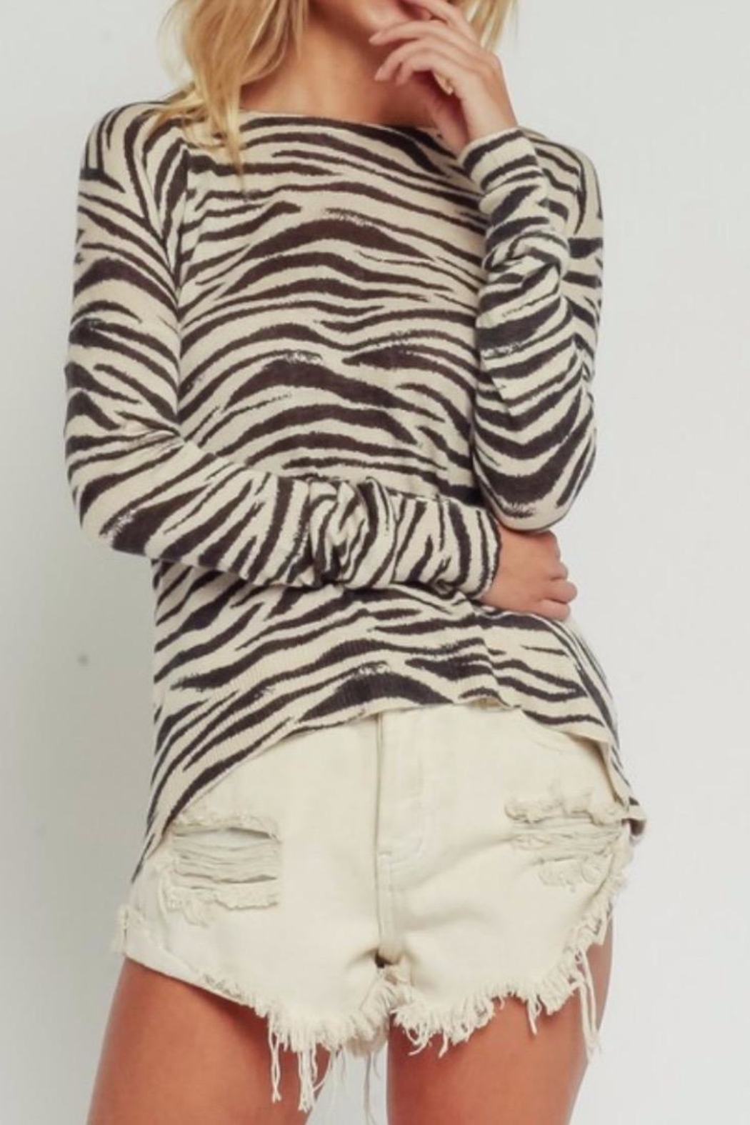 Olivaceous Zebra Sweater - Front Cropped Image