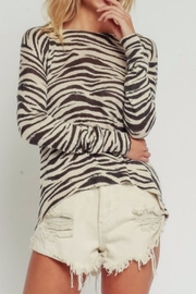 Olivaceous Zebra Sweater - Front cropped