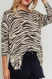 Olivaceous Zebra Sweater - Product Mini Image