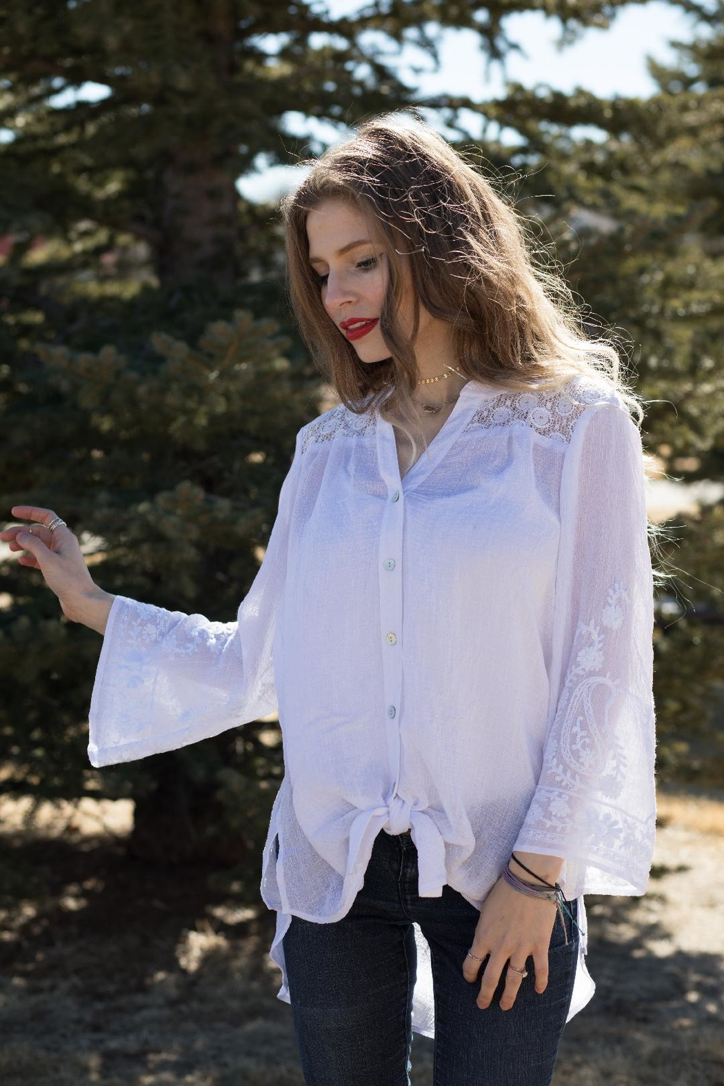 Olive Hill Lace Embroidered Blouse - Main Image