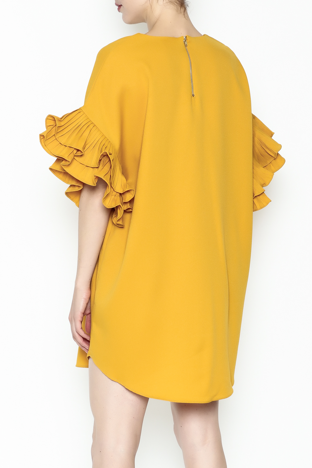 On Twelfth Ruffle Sleeve Dress - Back Cropped Image