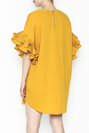 On Twelfth Ruffle Sleeve Dress - Back cropped