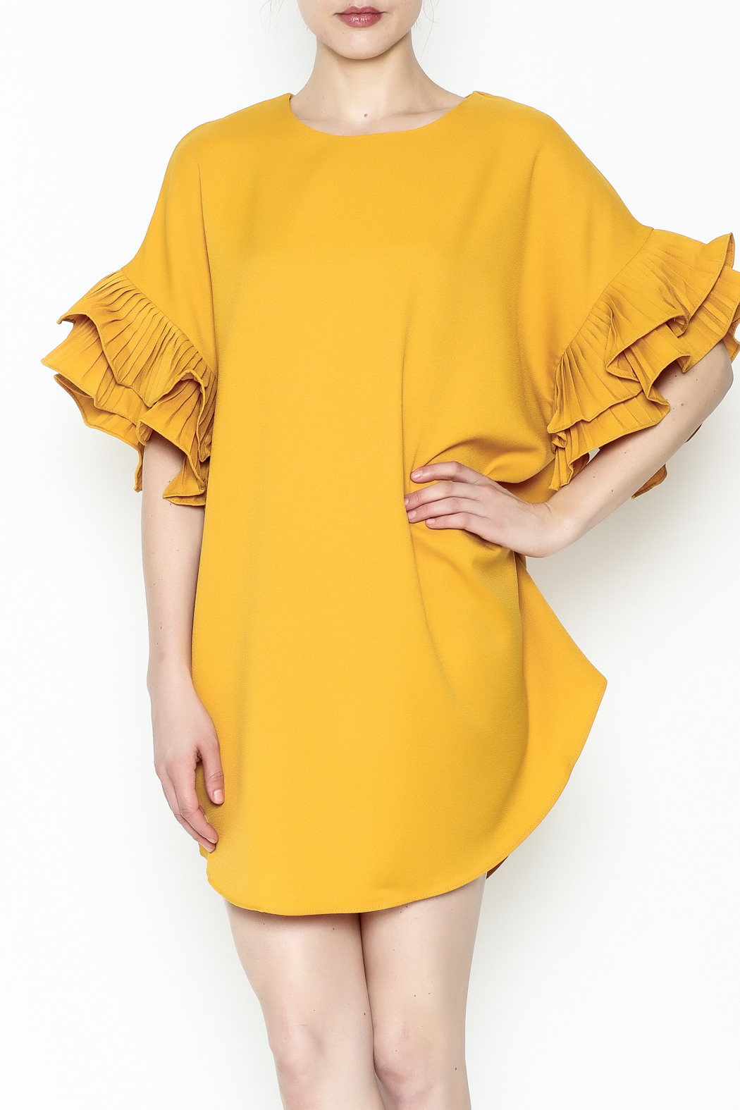 On Twelfth Ruffle Sleeve Dress - Main Image