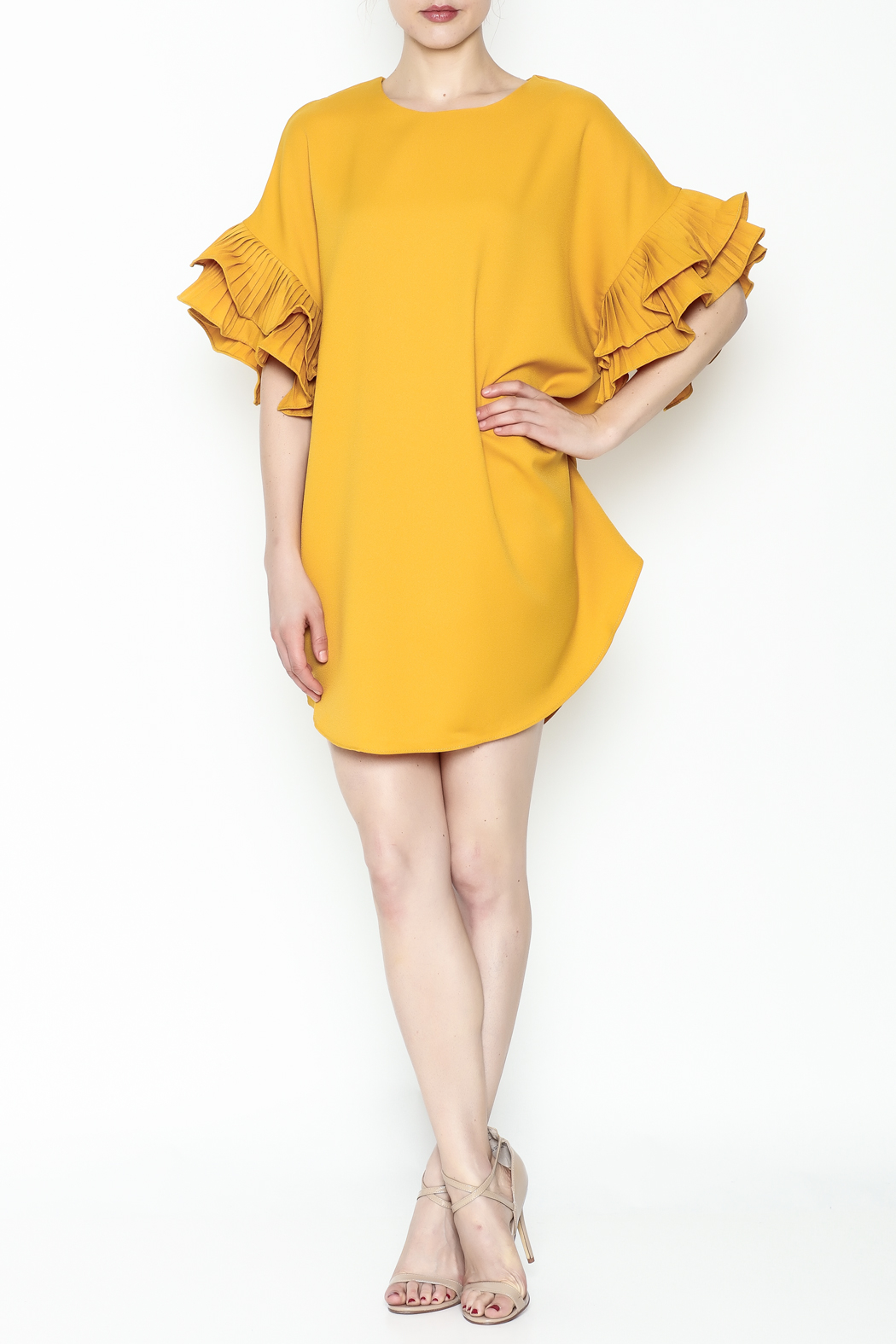On Twelfth Ruffle Sleeve Dress - Side Cropped Image