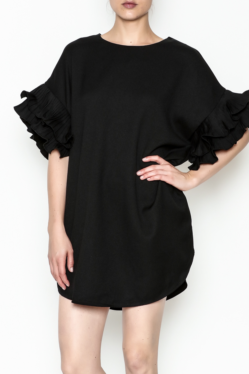On Twelfth Ruffle Sleeve Dress - Front Cropped Image