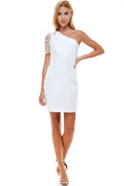 TCEC One Shoulder Puff Sleeve Dress - Other