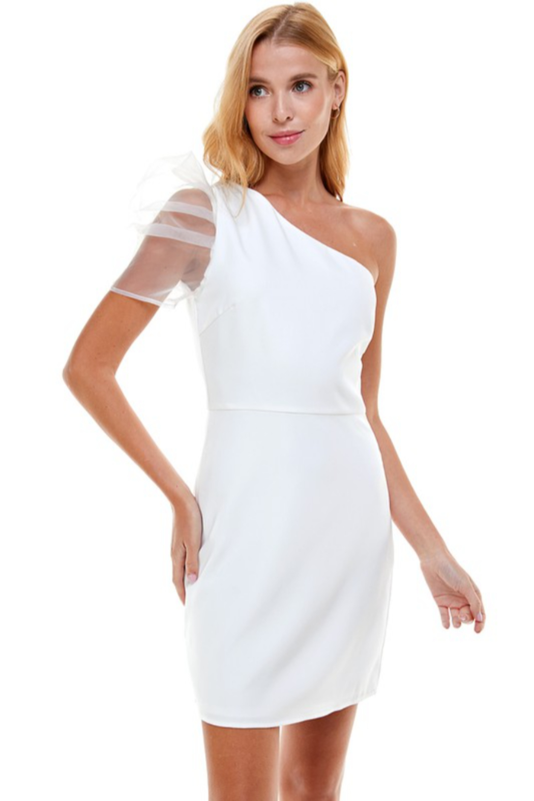 TCEC One Shoulder Puff Sleeve Dress - Front Cropped Image