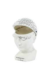 One Hundred 80 Degrees Phrenology Hinged Box - Front cropped
