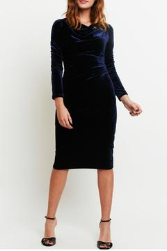 Shoptiques Product: Nessi Velvet Dress