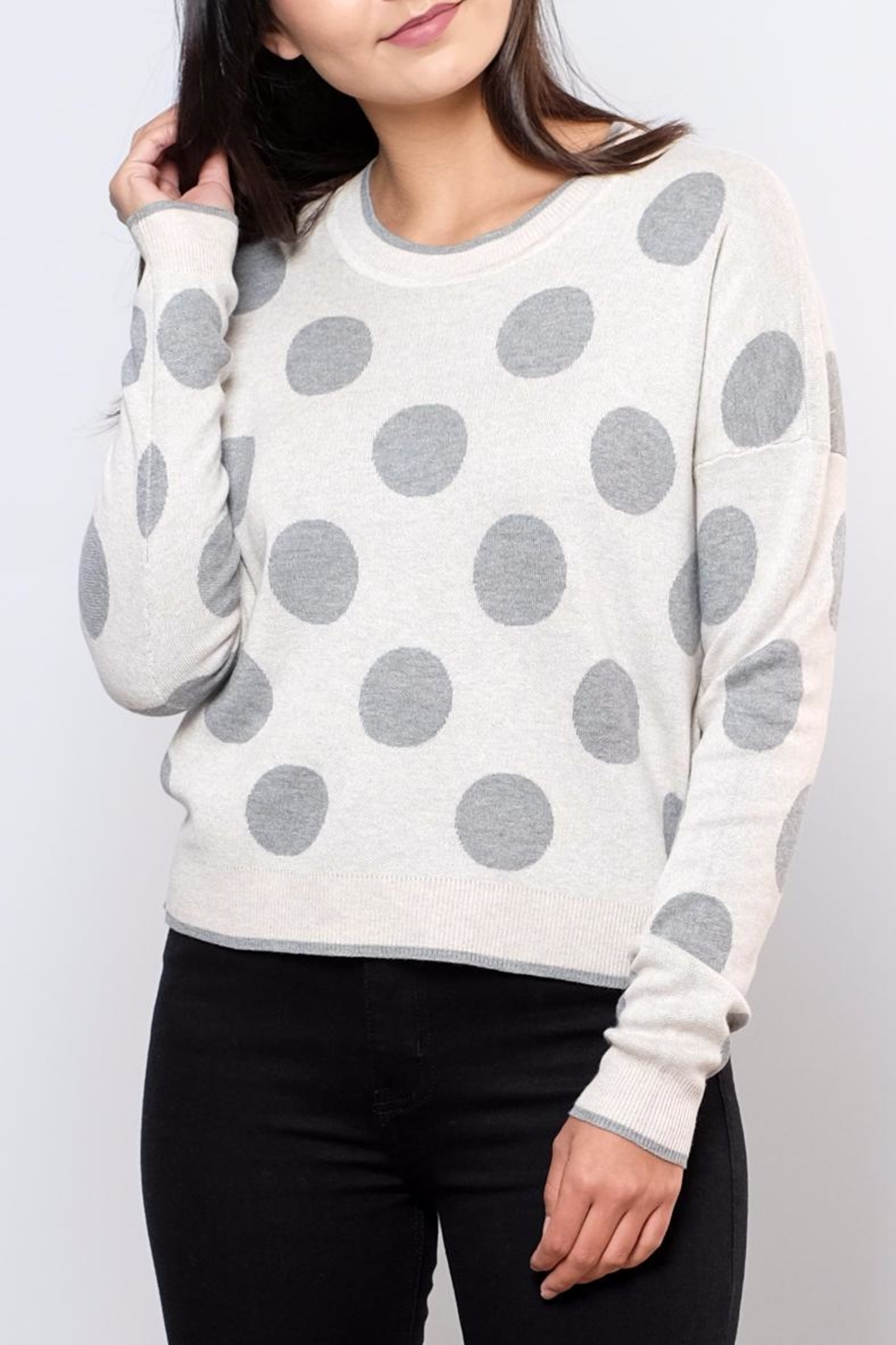 ONLY Polka Dot Pullover Top - Front Cropped Image