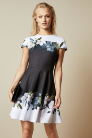 Ted Baker Opal Printed Skater Dress - Product Mini Image
