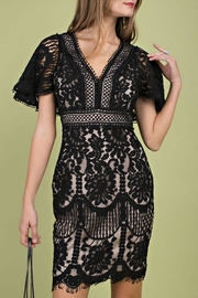 Main Strip Open-Back Lace Mini-Dress - Product Mini Image