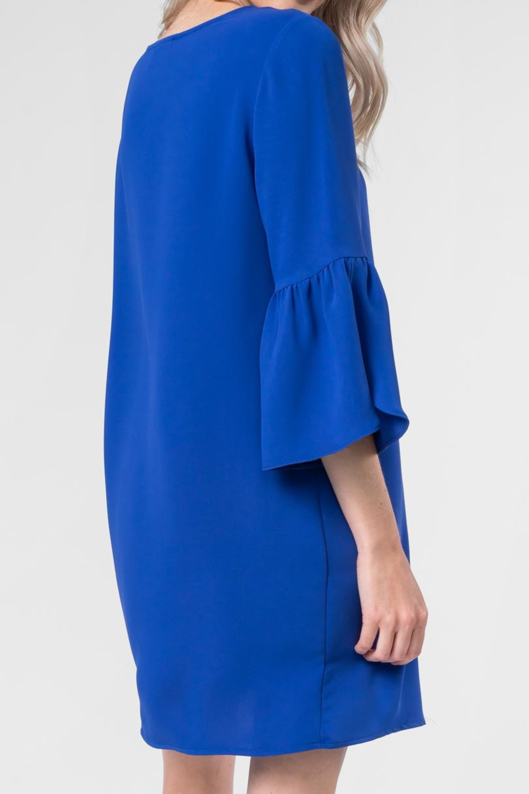 Made by Mila Open Sleeve Dress - Side Cropped Image