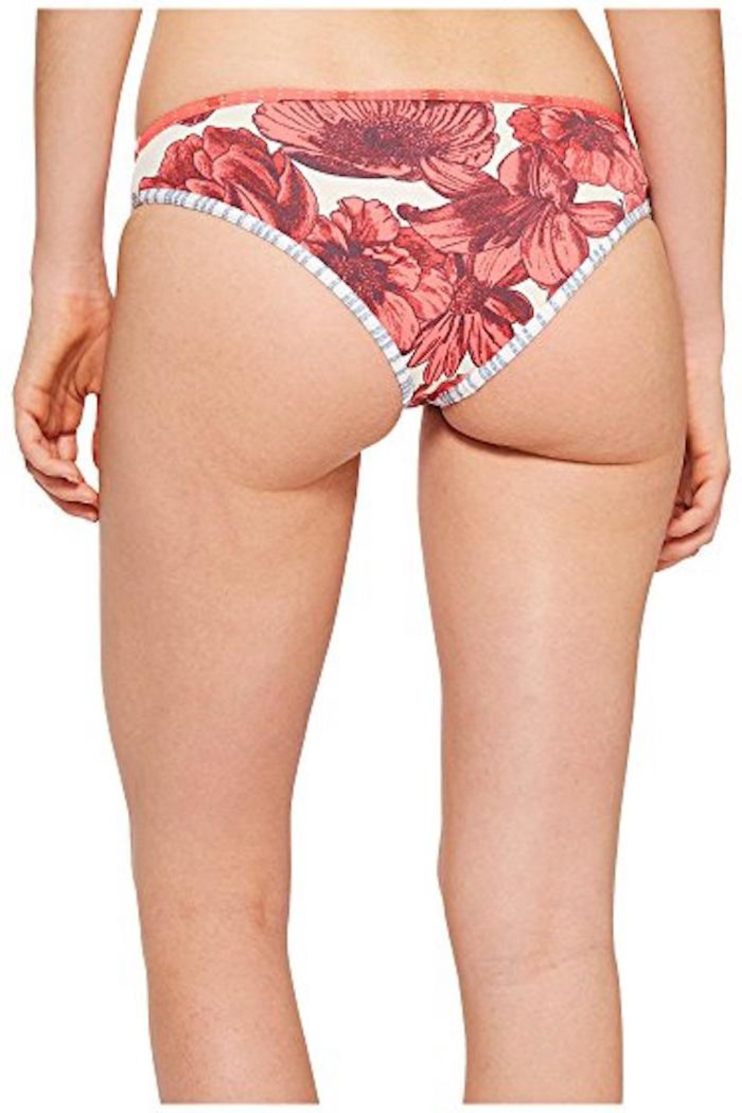 Maaji Swimwear Orchid Dolphins Bottom - Front Full Image