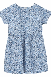 Serendipity Organics Organic Liberty Dress - Front cropped