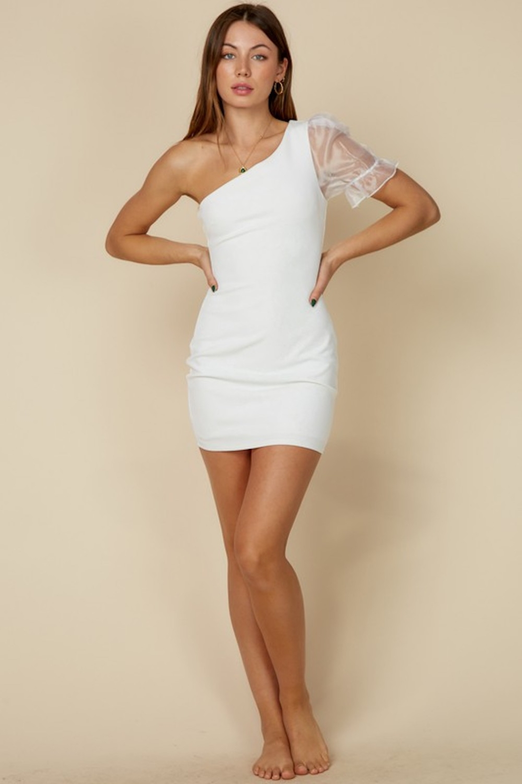 blue blush Organza Puff Sleeve Dress - Front Cropped Image