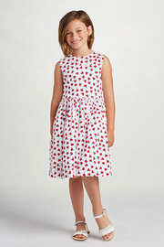 Oscar de la Renta Cherry Print Party Dress - Product Mini Image