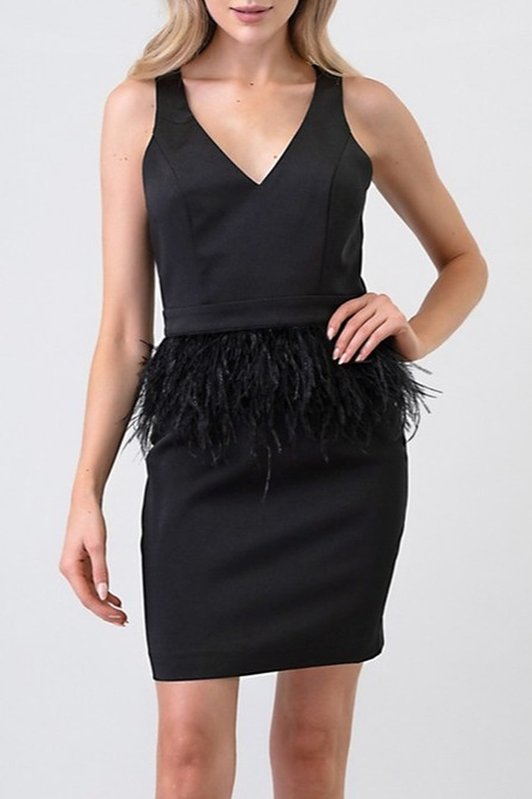 Minuet Ostrich Feather Waist Dress - Main Image