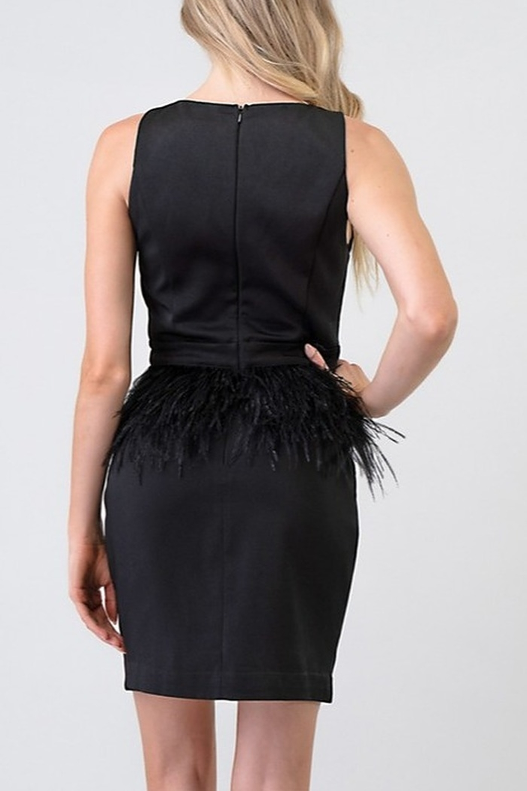 Minuet Ostrich Feather Waist Dress - Front Full Image