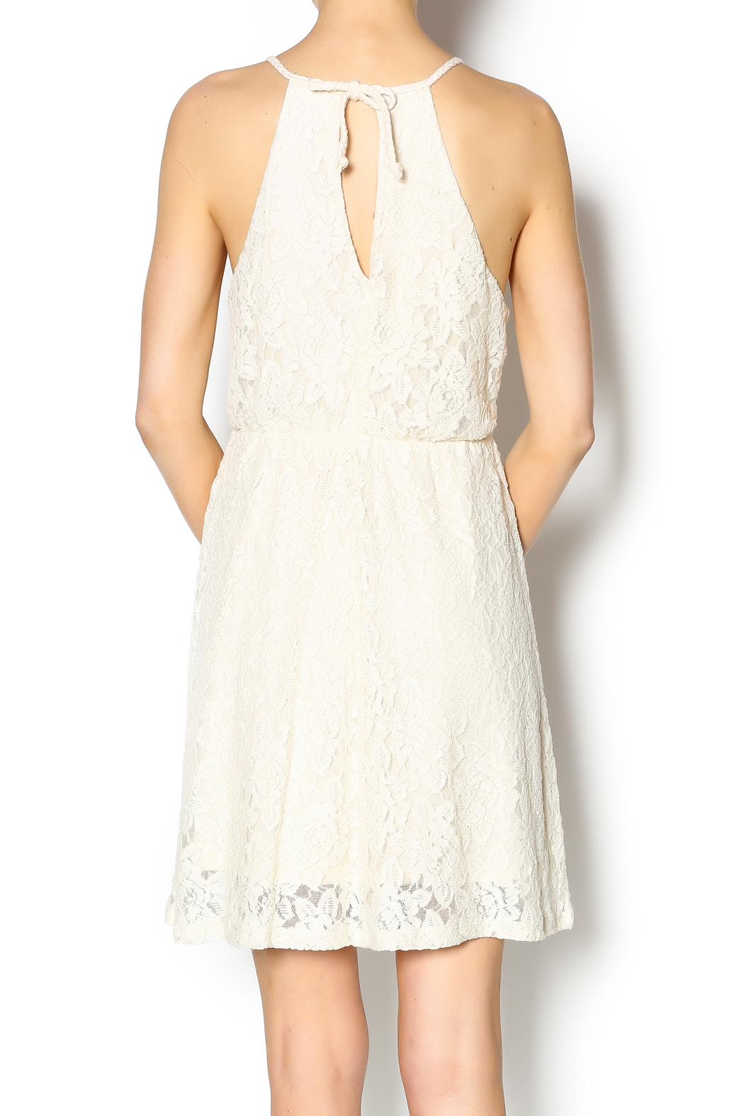 Others Follow  Freefall Lace Dress - Back Cropped Image