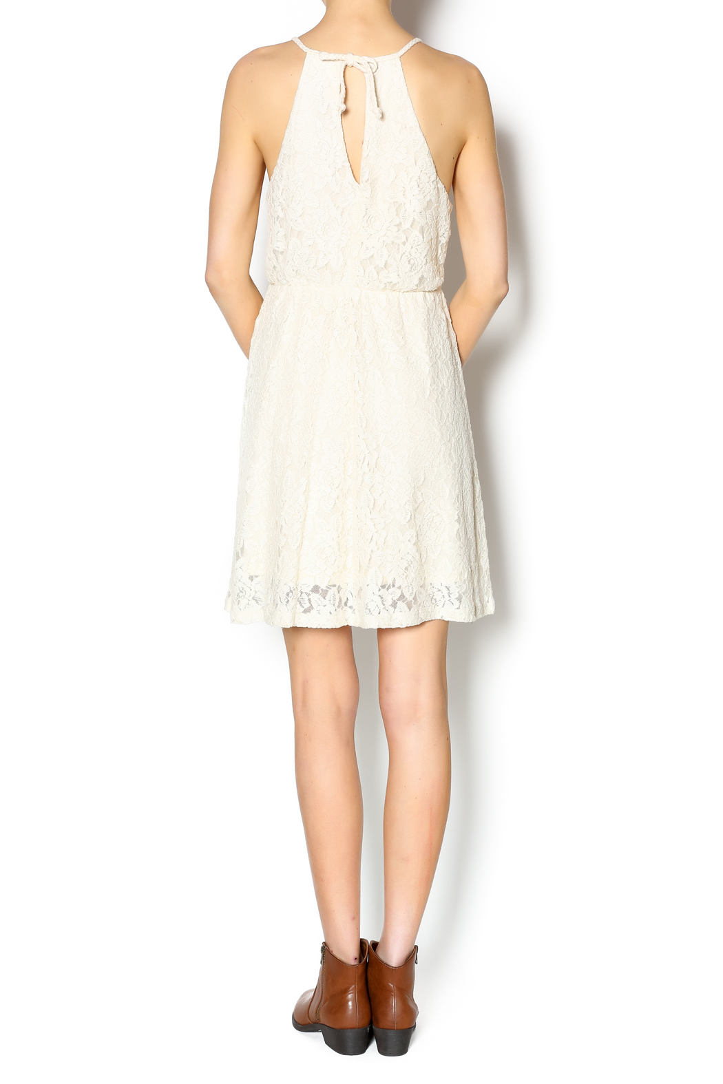 Others Follow  Freefall Lace Dress - Side Cropped Image