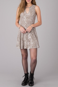Others Follow  Silver Bliss Lace Dress - Alternate List Image
