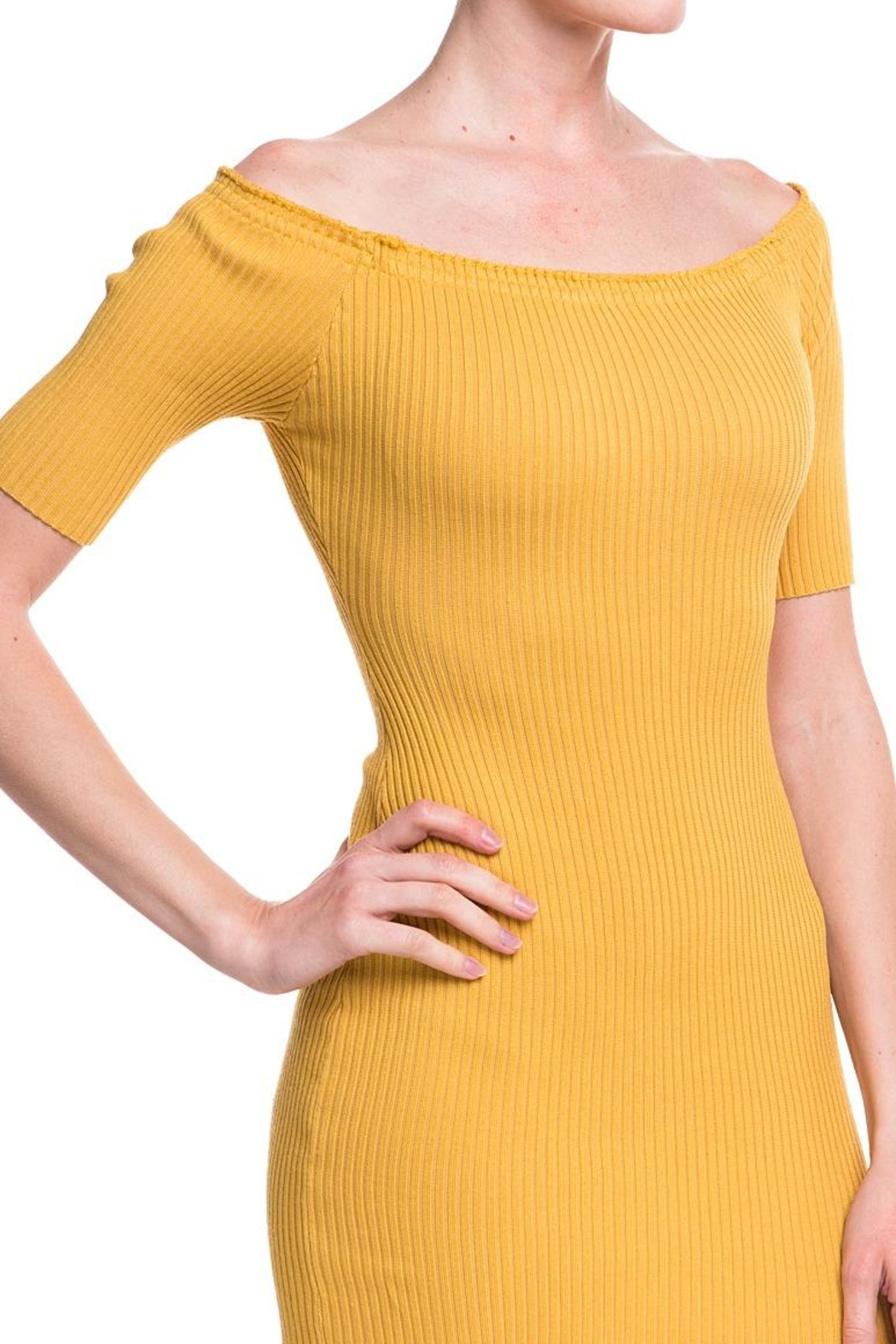 Noble U Ots Ribbed Dress - Back Cropped Image