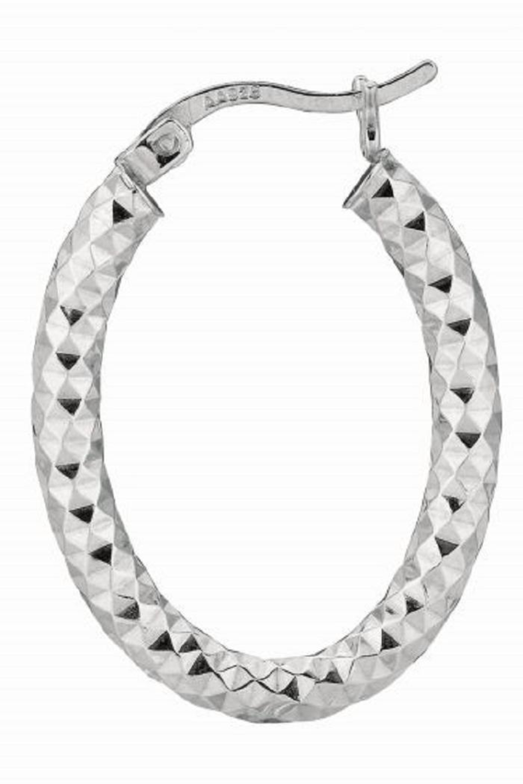 Bling It Around Again Oval Hoop Earrings - Main Image