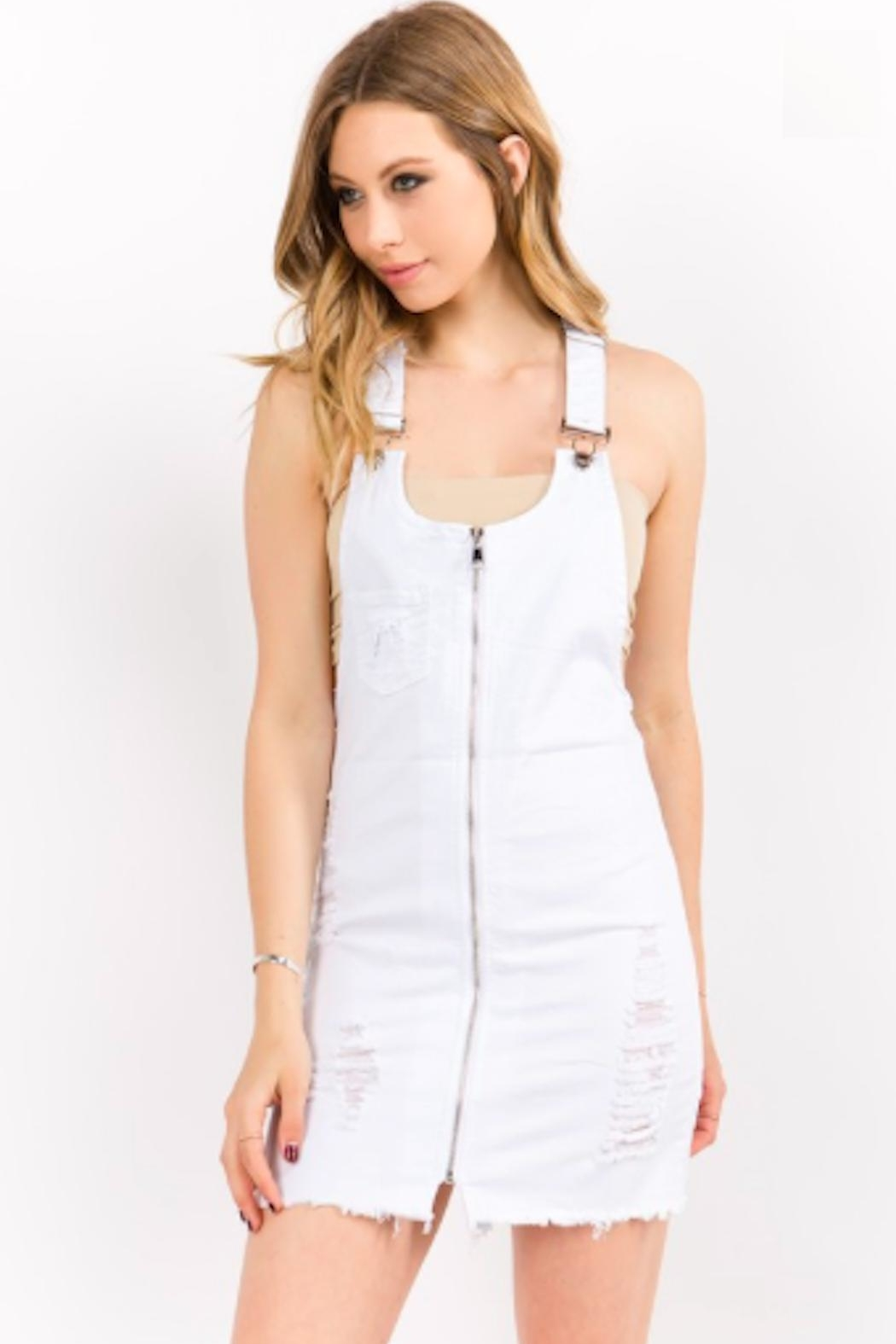 TIMELESS Overall Zip Dress - Main Image