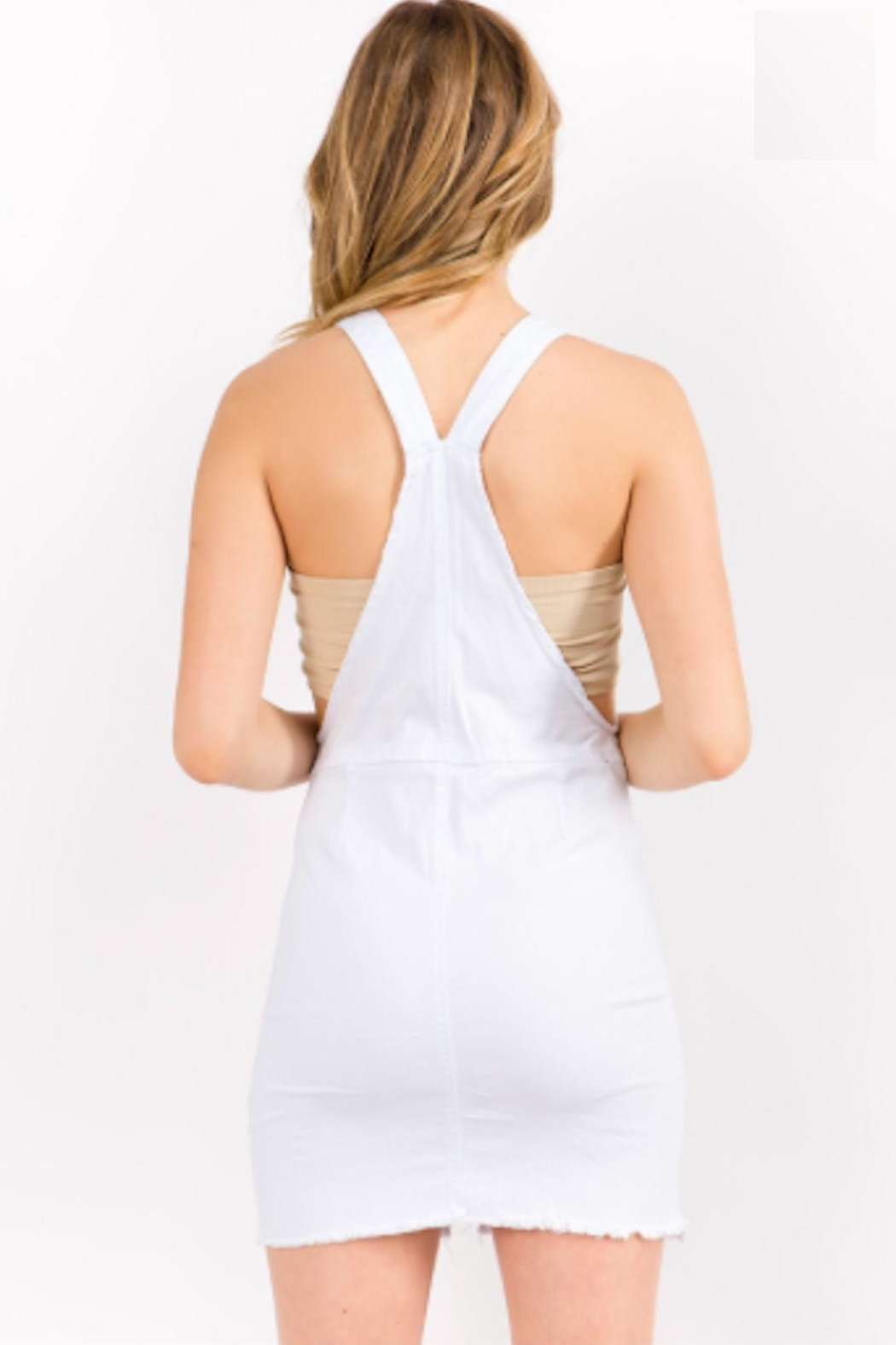 TIMELESS Overall Zip Dress - Back Cropped Image