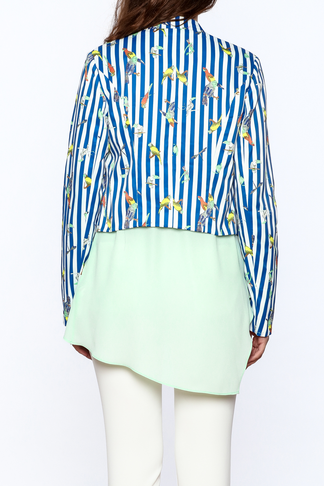 OVI Blue Stripe Print Blazer - Back Cropped Image