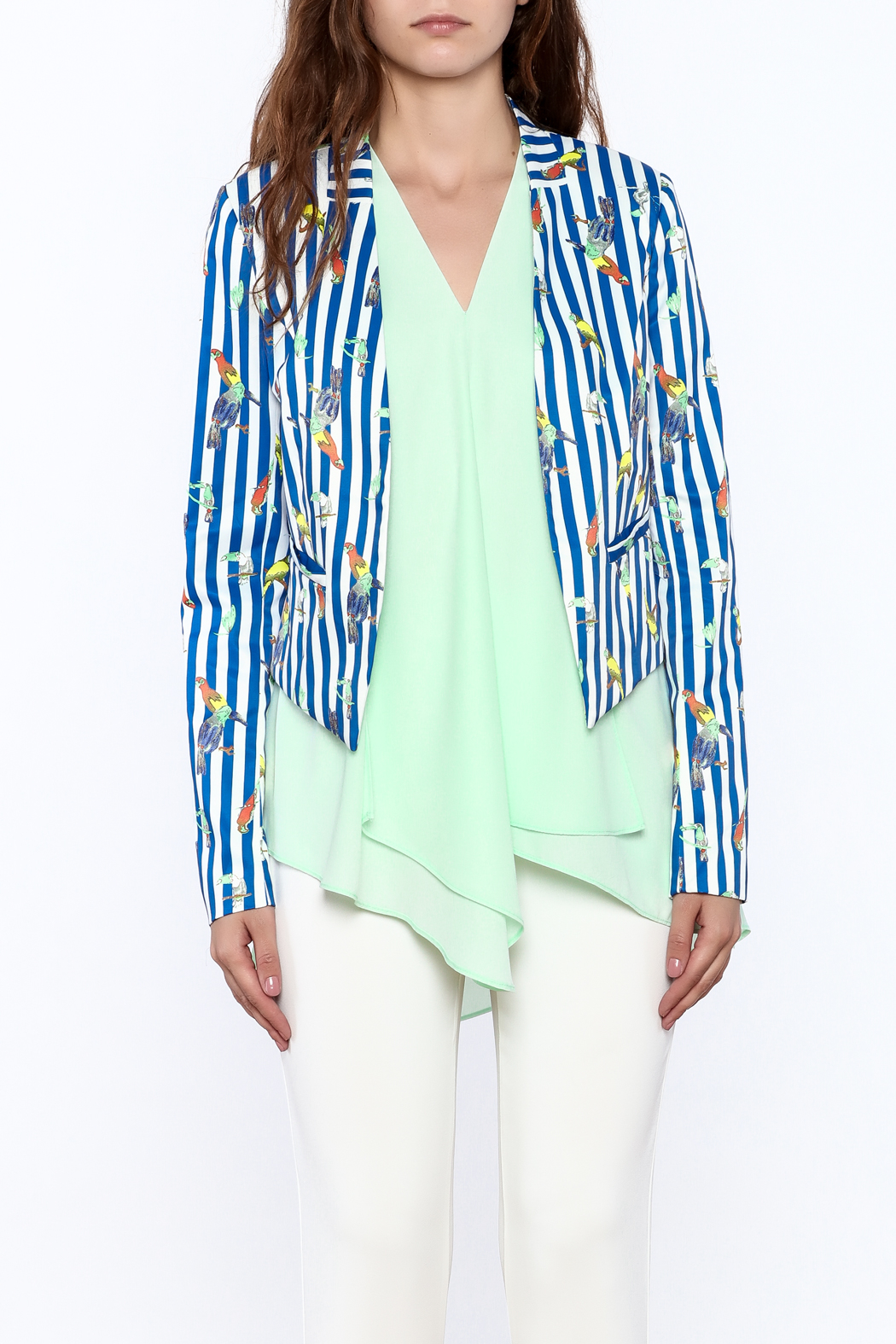 OVI Blue Stripe Print Blazer - Side Cropped Image