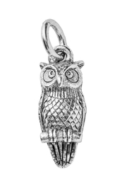 Beaucoup Designs Owl Charm - Front cropped