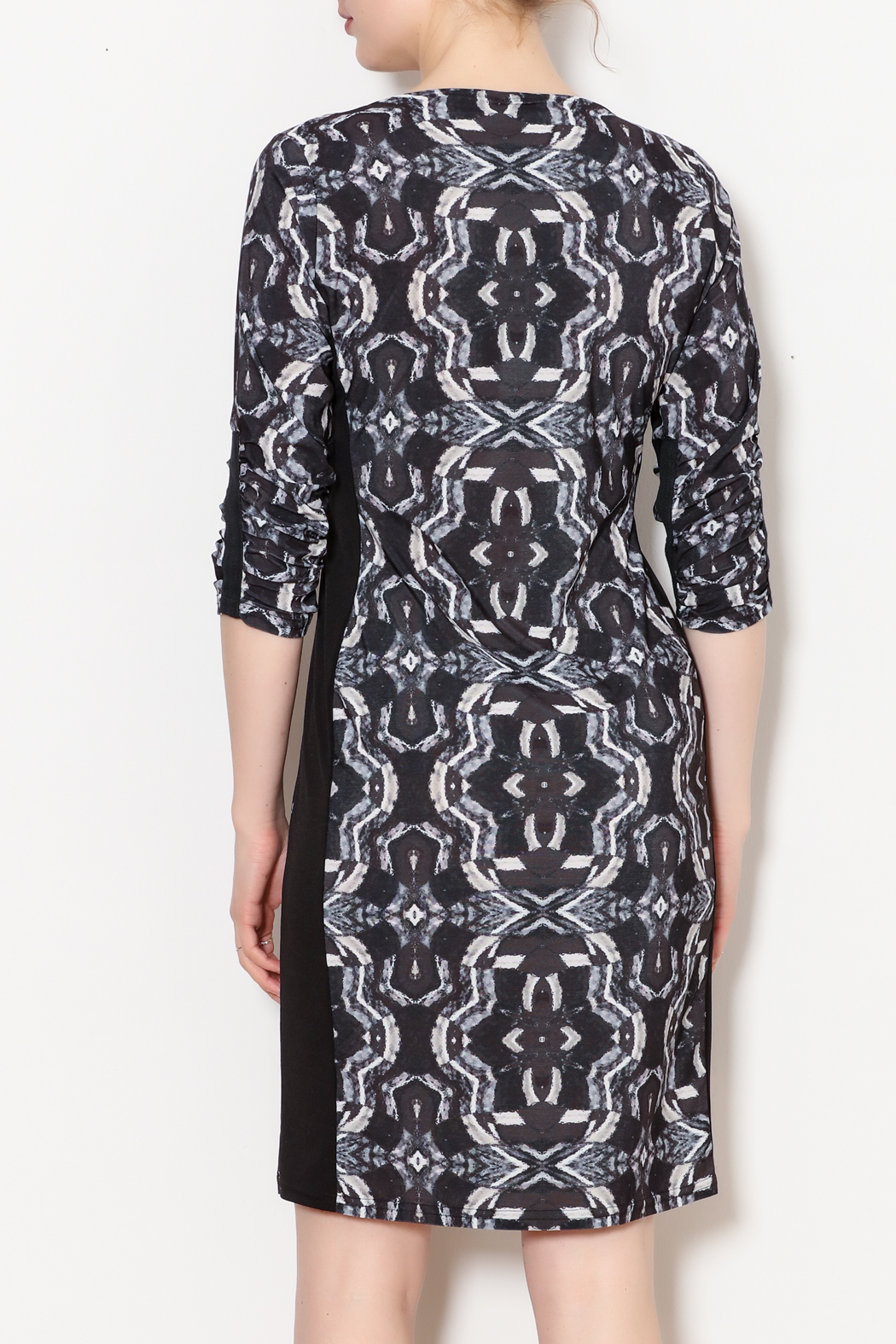 Viereck Oxy Contrast Side Panel Dress - Back Cropped Image