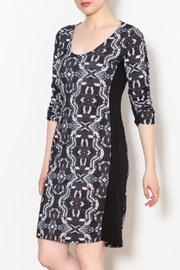 Viereck Oxy Contrast Side Panel Dress - Front cropped