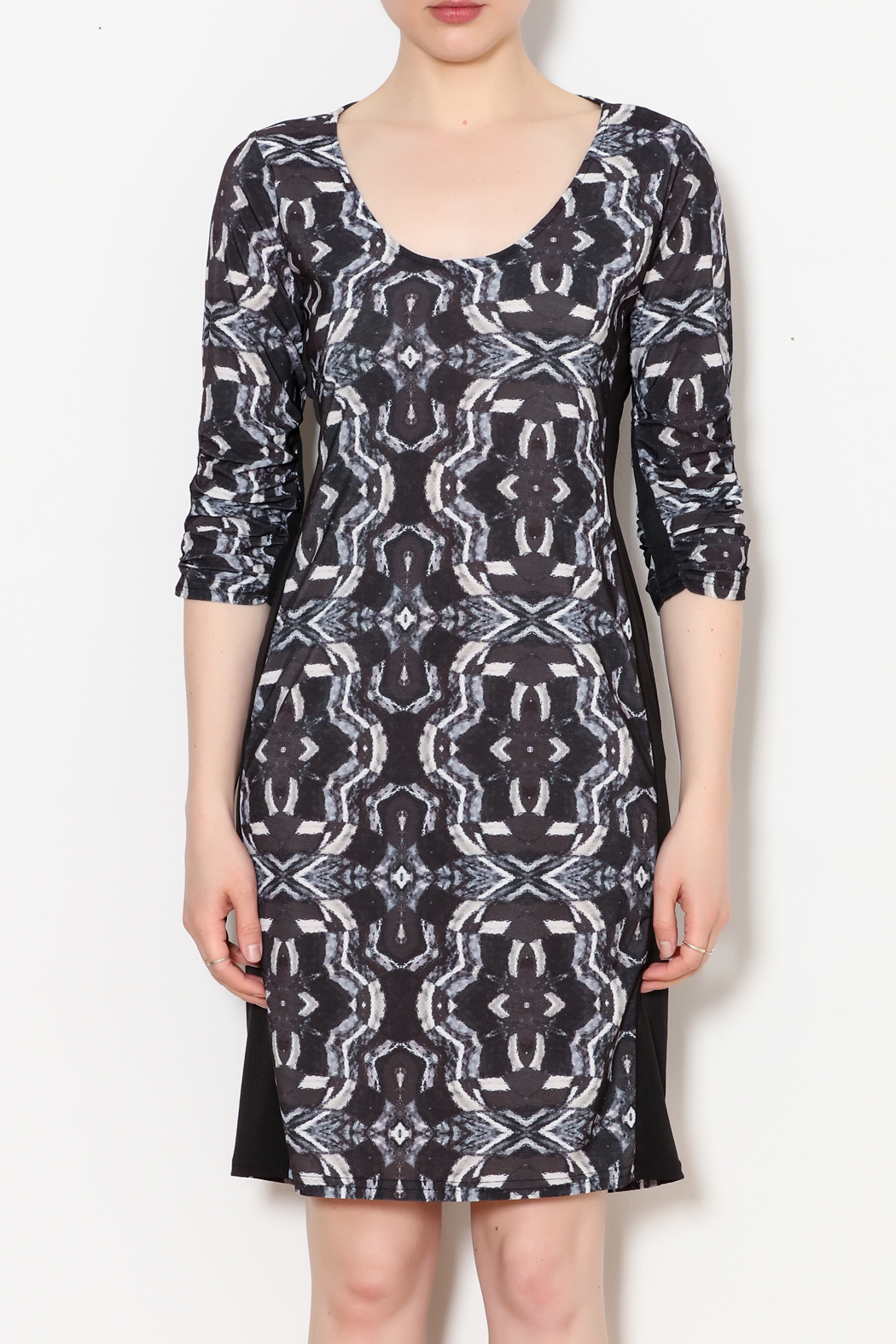 Viereck Oxy Contrast Side Panel Dress - Front Full Image