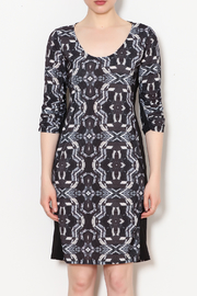 Viereck Oxy Contrast Side Panel Dress - Front full body