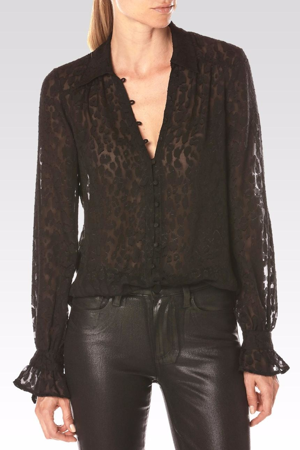Paige Emberly Blouse - Main Image