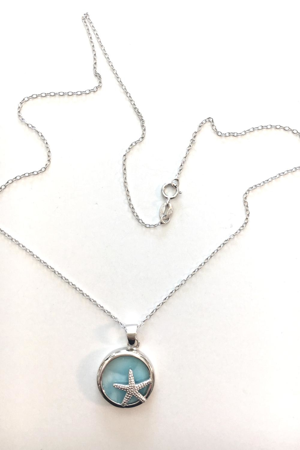 Painted Daisies Larimar Starfish Necklace - Front Full Image