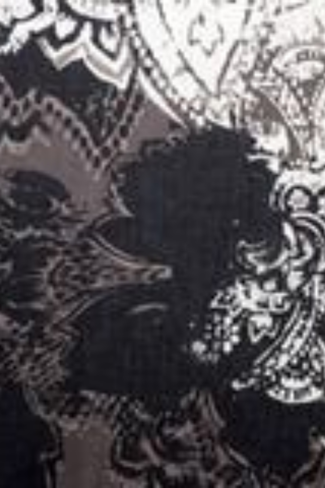 Kinross Cashmere PAISLEY PRINT SCARF - Back Cropped Image