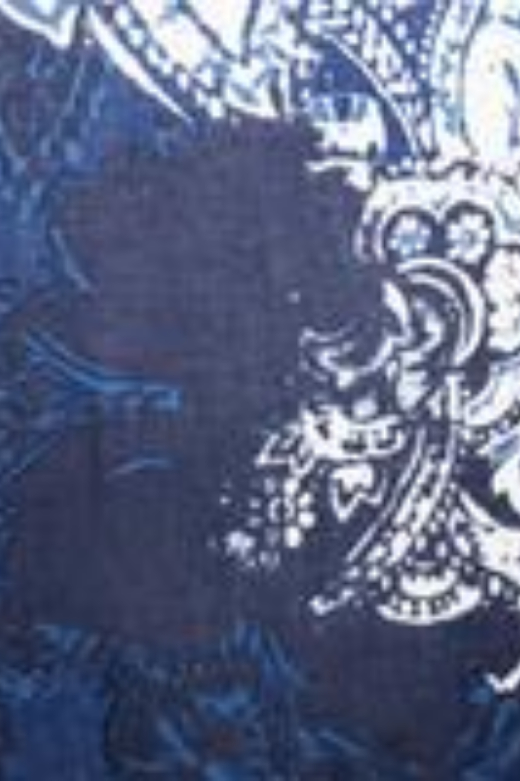 Kinross Cashmere PAISLEY PRINT SCARF - Side Cropped Image