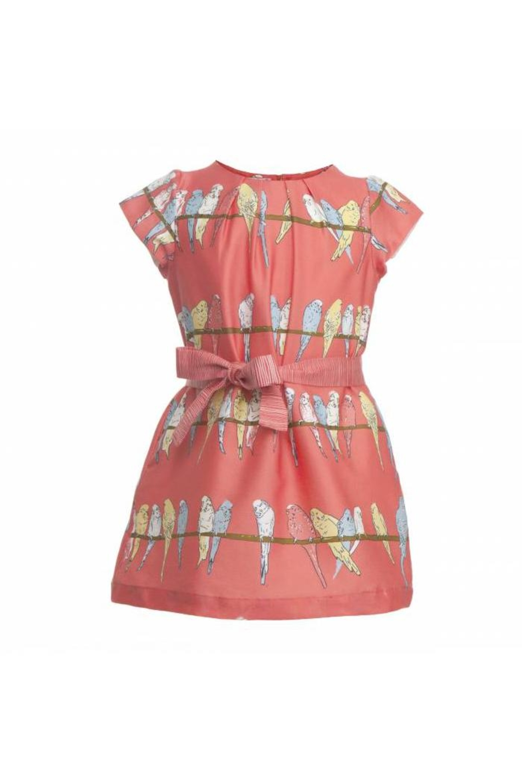 Palava Georgina Bird Dress - Front Cropped Image