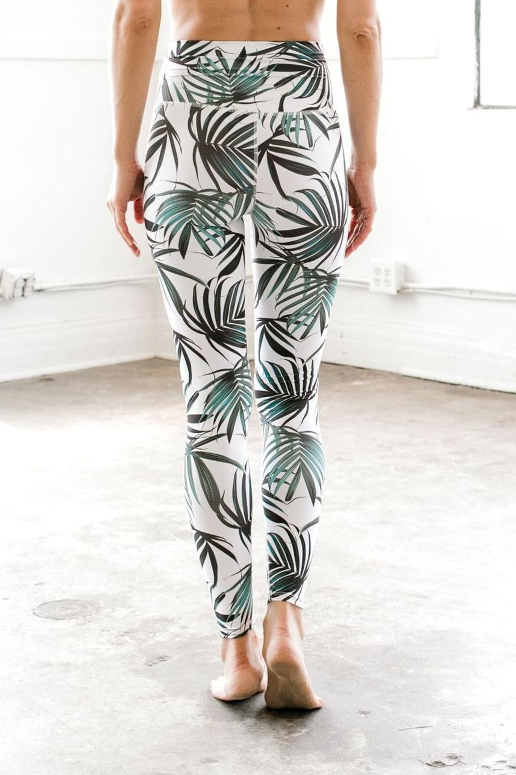 DYI Palm Signature Tight - Front Full Image