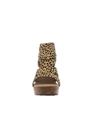 Pierre Dumas Pam-4 Platform Wedge - Front full body