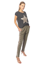 Gypsetters Pants Sequin Stripe - Front cropped