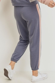 Paper Crane Color Block Jogger - Back cropped