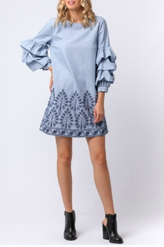 Shoptiques Product: Embroidered Smocked Sleeve Dress