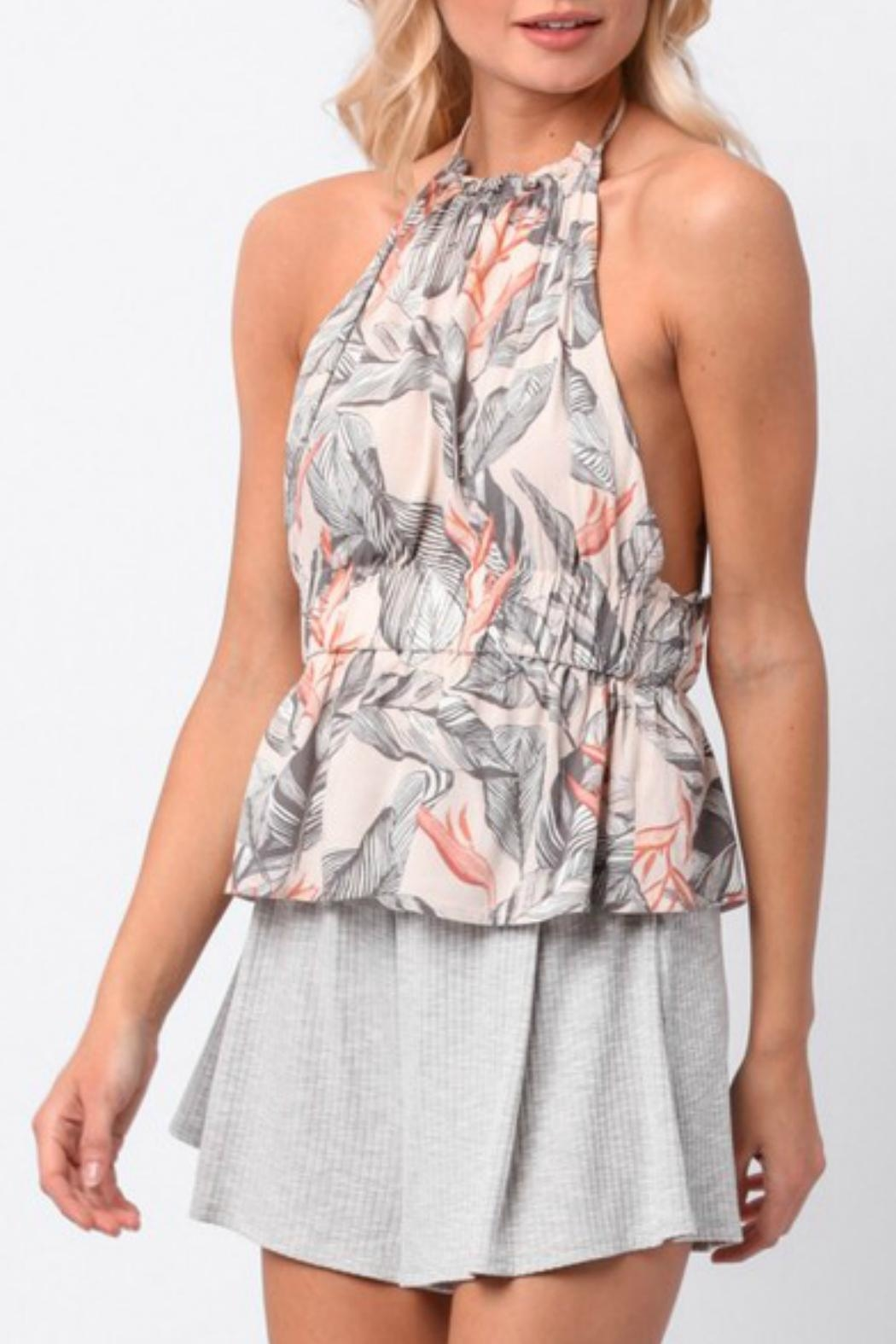 Paper Crane Halter Peplum Top - Front Cropped Image