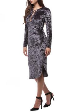 Paper Crane Velvet Lace Dress - Product List Image
