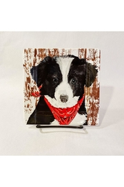 Paperproducts Design Small Bandana Puppy Plate - Product Mini Image